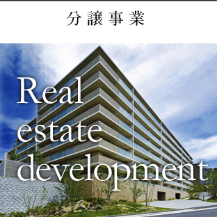 分譲事業 Real estate development